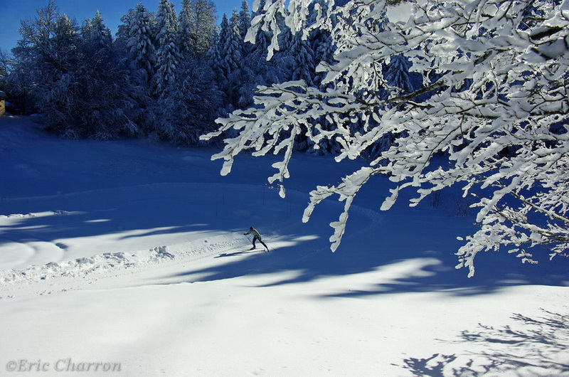 Ski de fond à la Chapelle en vercors