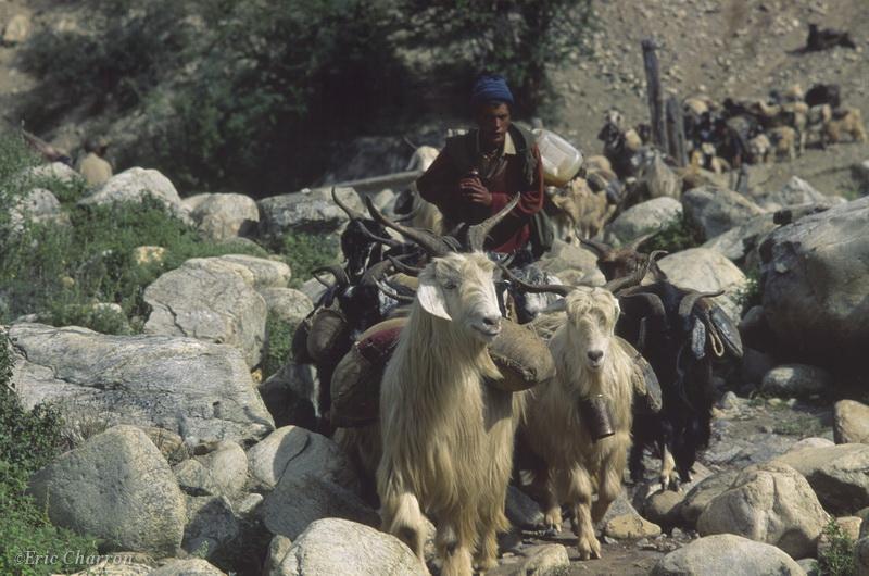 vallée de la Karnali