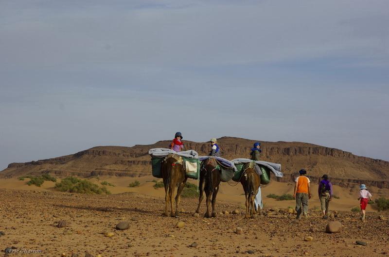 Vallée du Draa M'Hamid