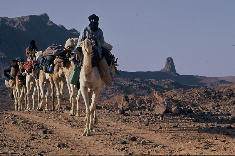 Plateau de l'Atakor, Hogga Algérie