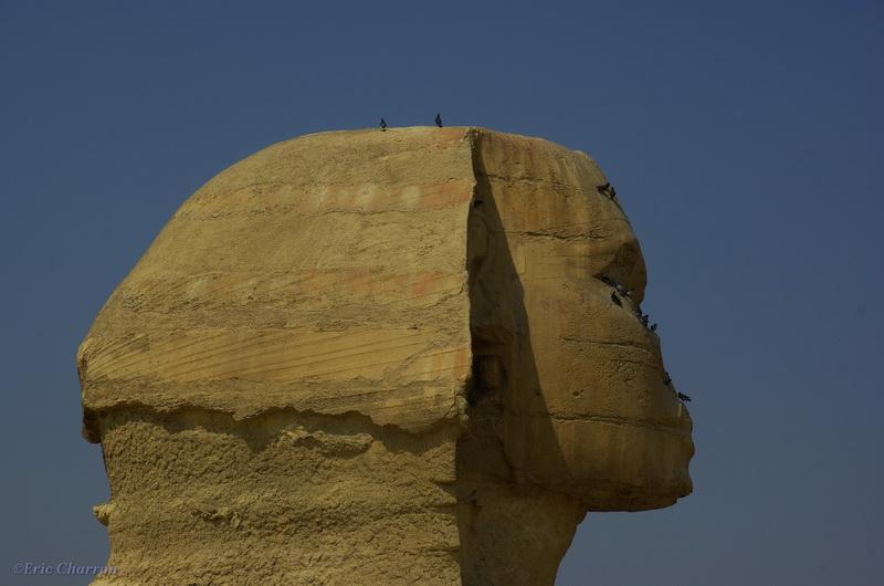 Le Sphinx de Guizet